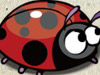焦虑的瓢虫3.0