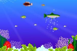 大鱼吃小鱼双人版3