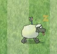 杀绵羊测反应