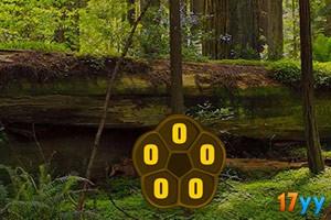 逃离红木森林