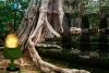 逃离玛雅人王朝森林