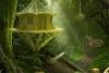 逃离亚洲丛林