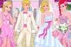 公主完美婚礼